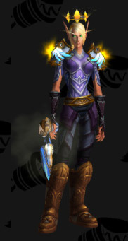Plate Transmog - Blood Elf Paladin - Winged Triumph